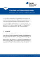 EU-Consultation on the European Pillar of Social Rights – Comments by the German Social Accident Insurance (Abridged Version)