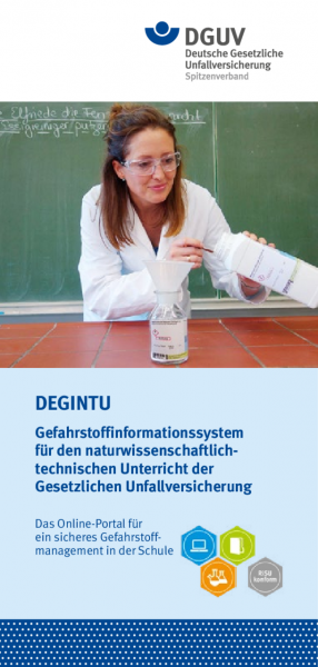 Informations-Flyer zu DEGINTU