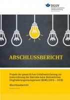 Abschlussbericht  - Projekt der gesetzlichen Unfallversicherung zur Unterstützung der Betriebe beim Betrieblichen Eingliederungsmanagement (BEM) (2016-2018)