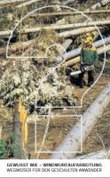 Gewusst wie - Windwurfaufarbeitung - Wegweiser für den geschulten Anwender