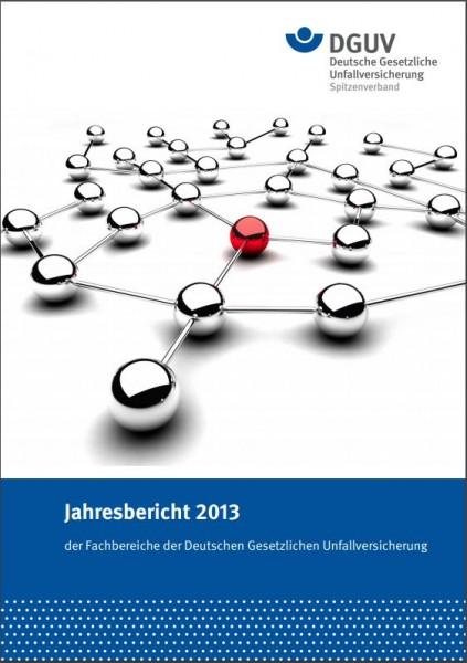 Jahresbericht 2013 der Fachbereiche der Deutschen Gesetzlichen Unfallversicherung