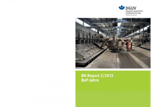 BaP-Jahre (BK-Report 2/2013)