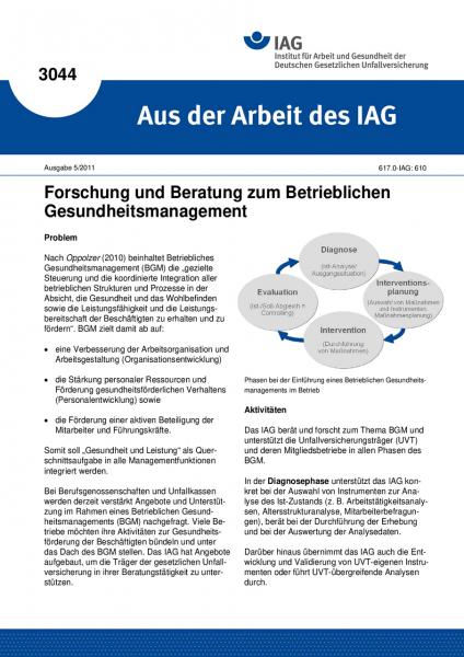 Forschung und Beratung zum Betrieblichen Gesundheitsmanagement. Aus der Arbeit des IAG Nr. 3044