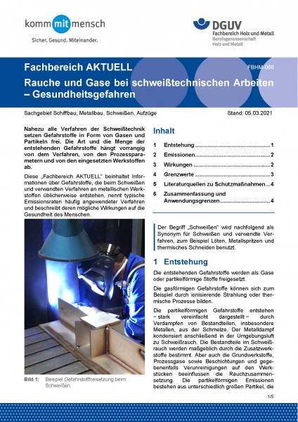 """FBHM-066 """"Rauche und Gase bei schweißtechnischen Arbeiten - Gesundheitsgefahren"""""""