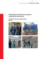 Beispiele guter Praxis für einen modernen und gezielten Arbeitsschutz - Beispiele für kleine und mittelständische Betriebe (GDA-Report)