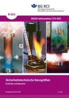 """Sicherheitstechnische Kenngrößen - Ermitteln und Bewerten (Merkblatt R 003 der Reihe """"Anlagensicherheit"""")"""